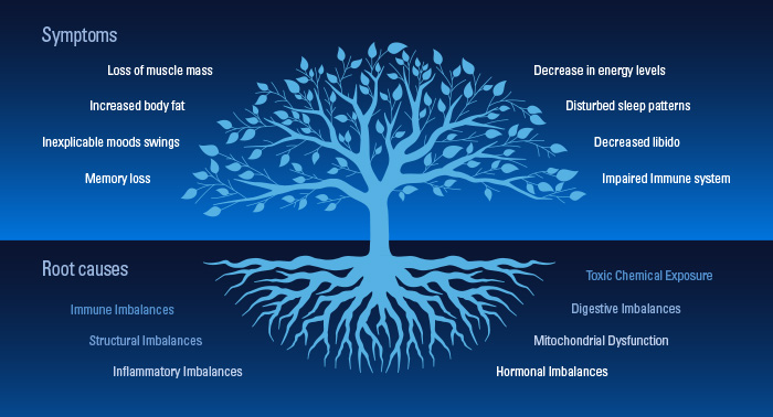 How Functional Medicine Finds Remedies At The Roots The
